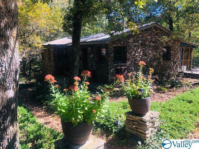 324 County Road 635, Mentone, AL 35984 (MLS #1154329) :: The Pugh Group RE/MAX Alliance