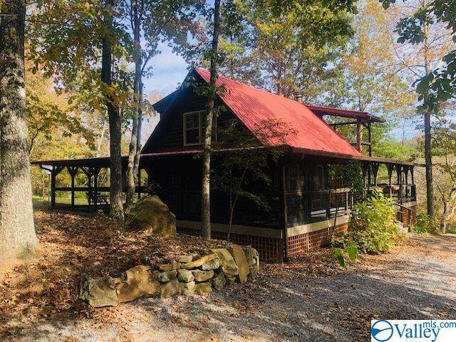 1565 County Road 633, Mentone, AL 35984 (MLS #1155399) :: RE/MAX Unlimited