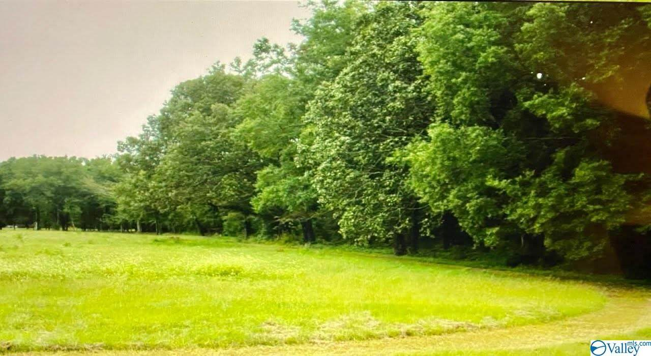 10684 Alabama Highway 24 - Photo 1