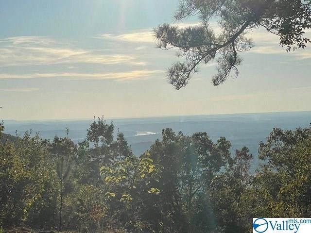 5124 Willow Drive, Huntsville, AL 35803 (MLS #1156923) :: LocAL Realty