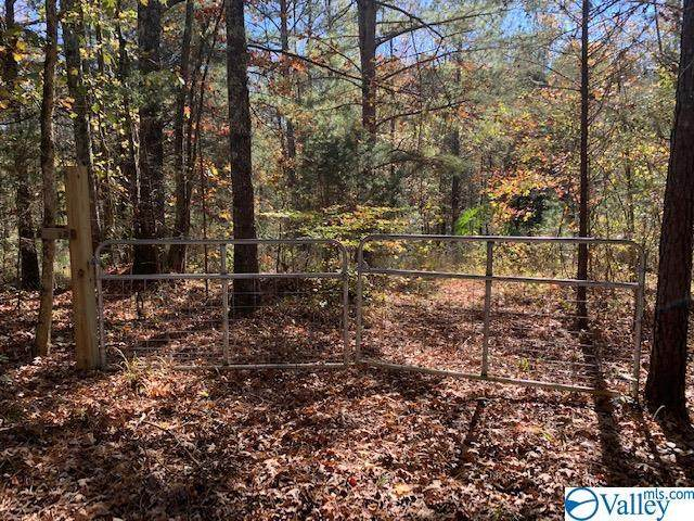 LOT 10 Stewart Hollow Road, Grant, AL 35747 (MLS #1157184) :: MarMac Real Estate