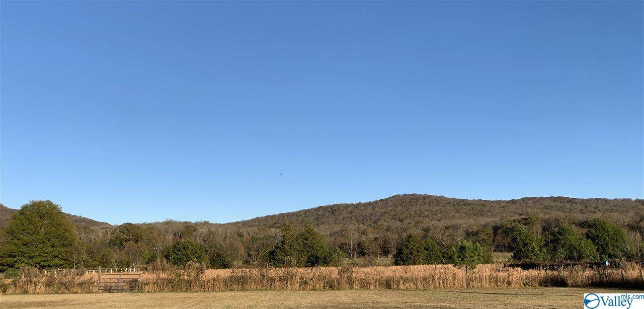 371 Old Gurley Pike - Photo 1