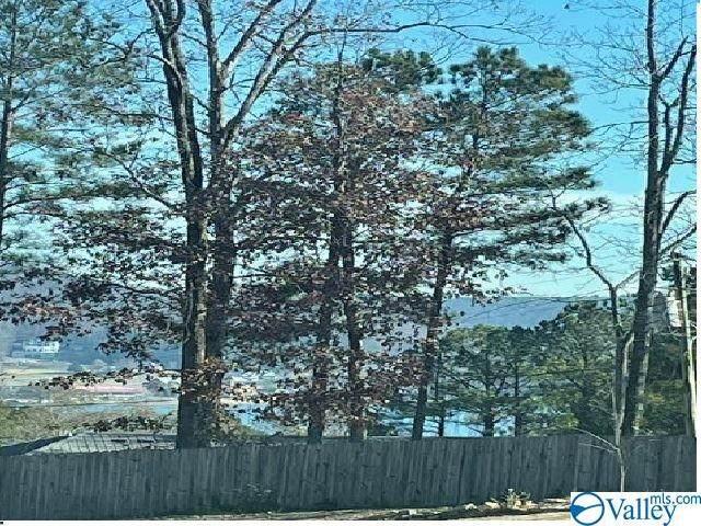 9 Laurinda Lane, Guntersville, AL 35976 (MLS #1770932) :: MarMac Real Estate