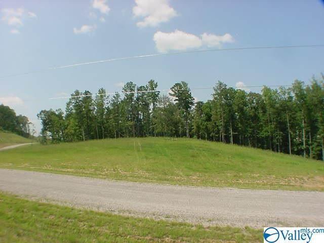 105 Sipsey Overlook Road, Double Springs, AL 35553 (MLS #1771294) :: Amanda Howard Sotheby's International Realty