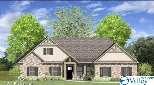132 Rosemary Ayers Drive, Madison, AL 35756 (MLS #1771428) :: MarMac Real Estate