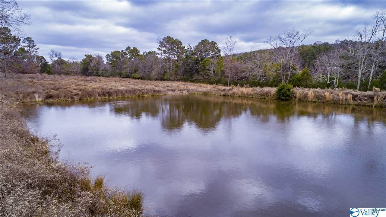 County Road 608 - Photo 1