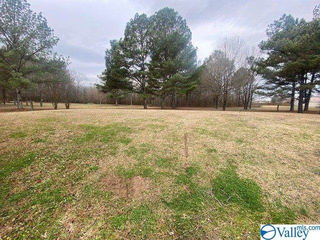 155 Summerford Orr Road, Falkville, AL 35622 (MLS #1773506) :: Coldwell Banker of the Valley