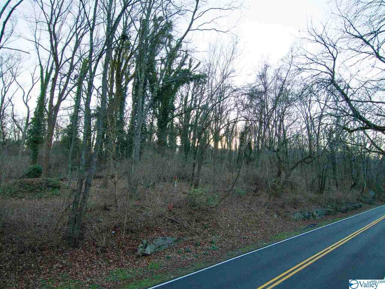 0 Bankhead Parkway - Photo 1