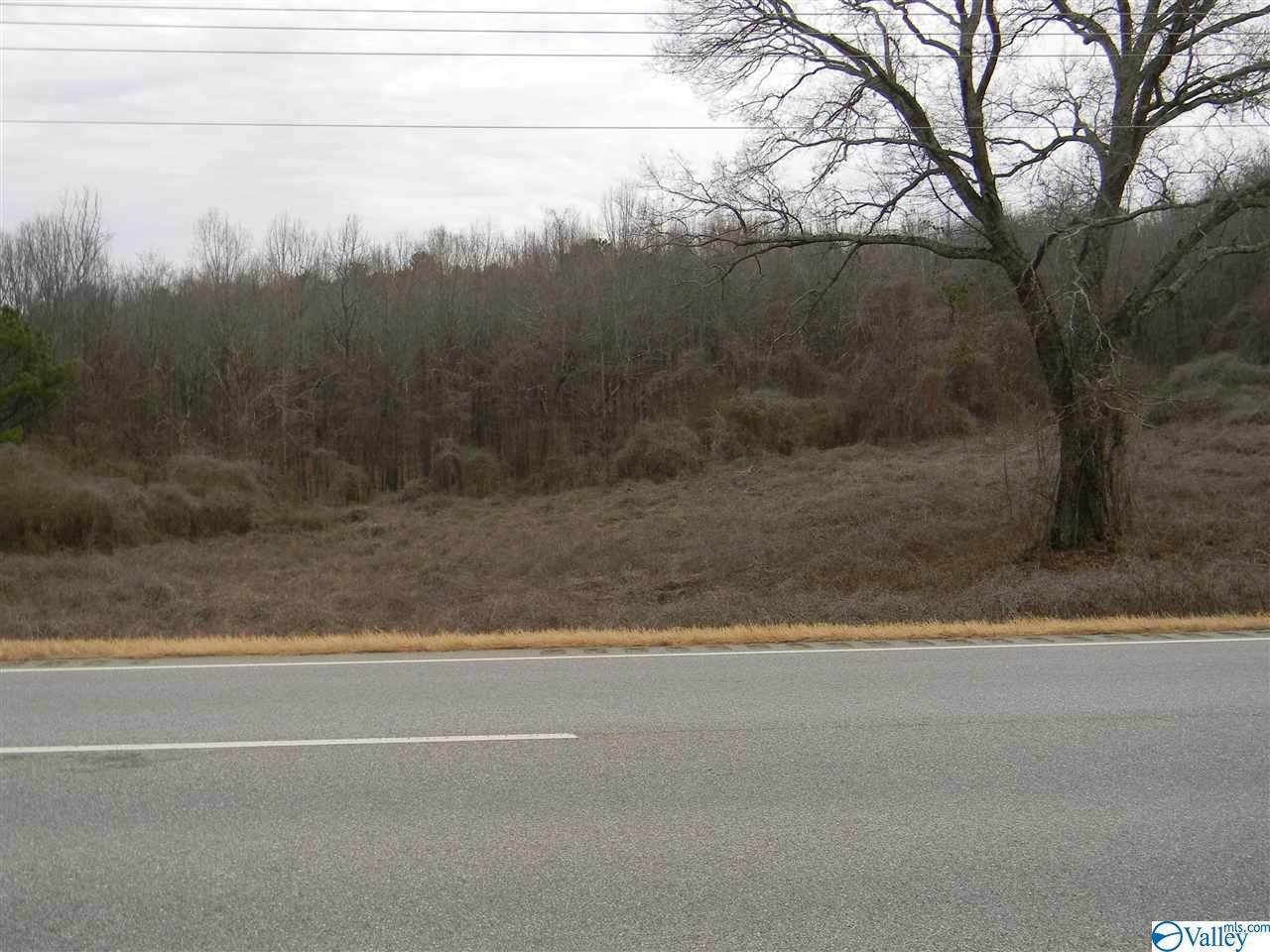 Lot # 3 Highway 411 - Photo 1
