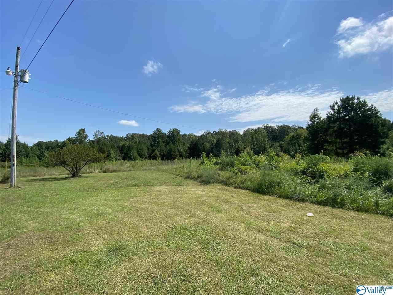 1446 County Road 246 - Photo 1