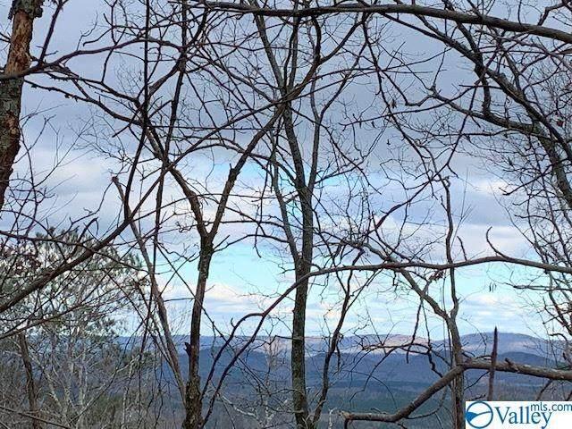 B10,B11 County Road 865, Gaylesville, AL 35973 (MLS #1774270) :: Southern Shade Realty