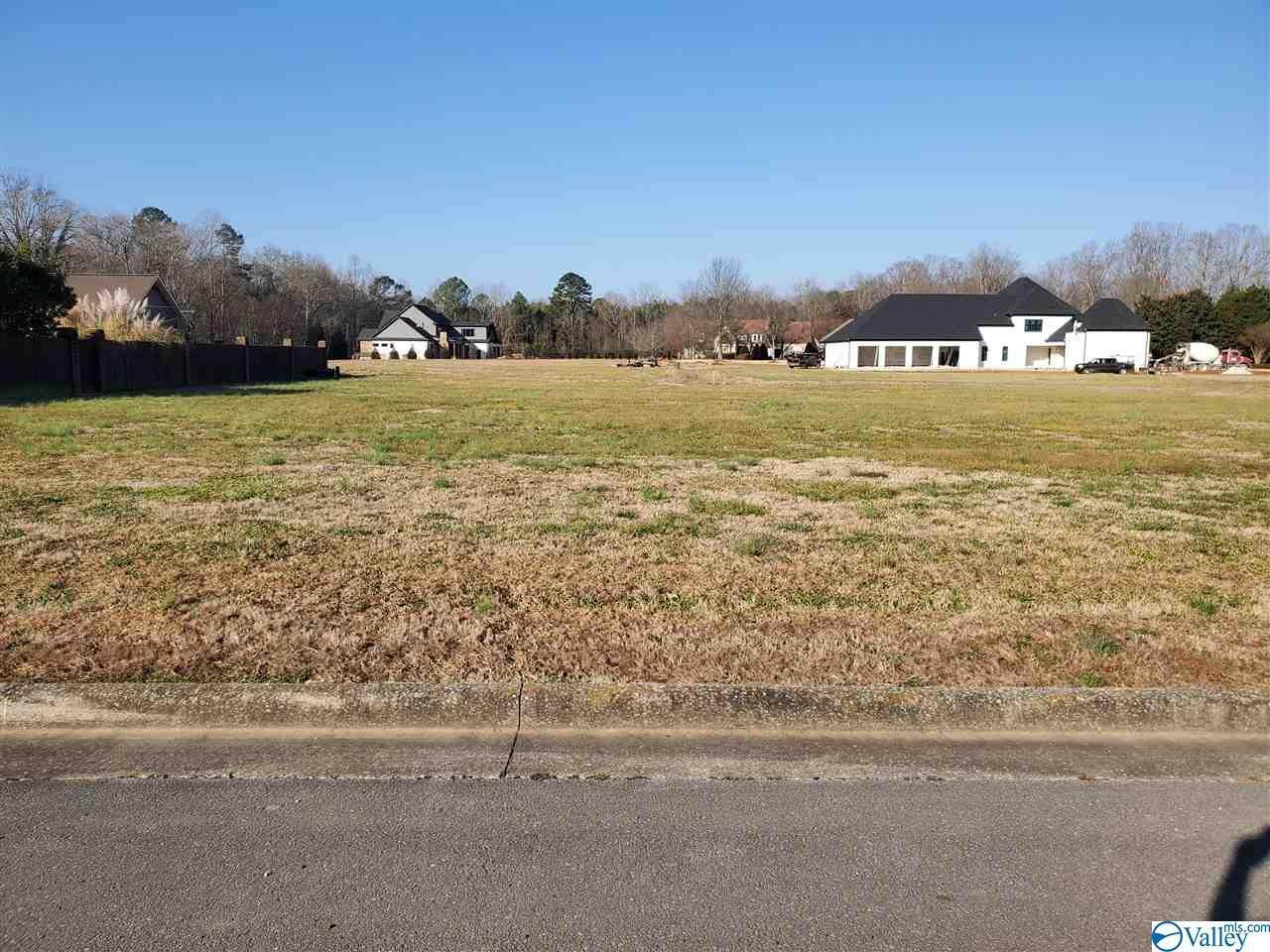 206 Briarwood Circle - Photo 1