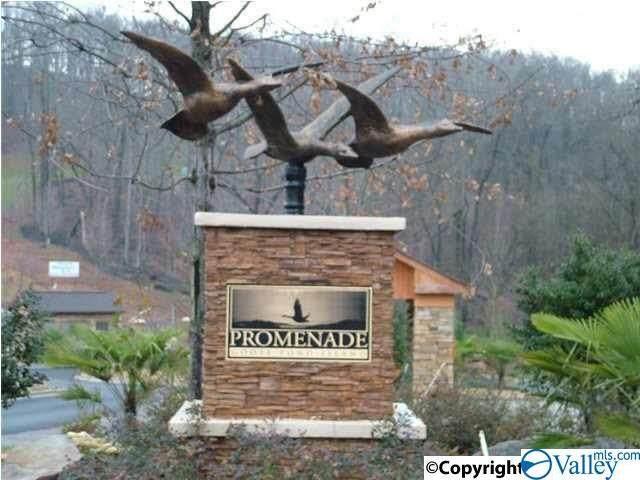 0 Lookout Drive Lot 111, Scottsboro, AL 35768 (MLS #1776015) :: MarMac Real Estate