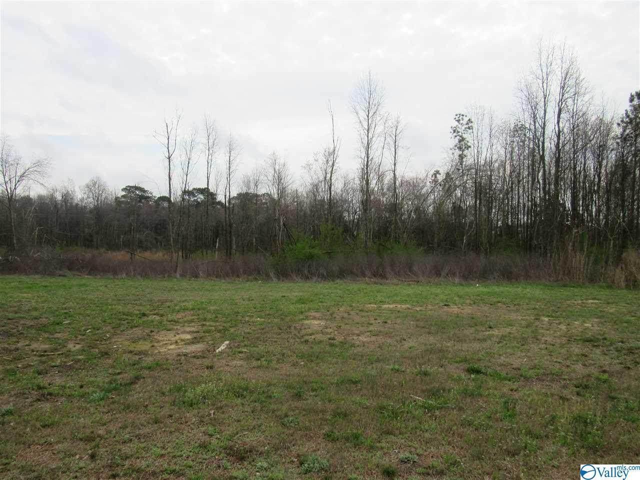 11800 Alabama Highway 227 - Photo 1