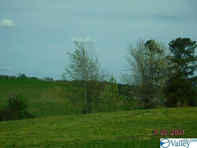 000 Hwy 431, Glencoe, AL 35905 (MLS #1777277) :: MarMac Real Estate