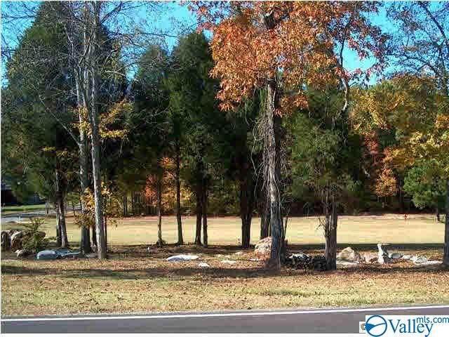Lot 2 Cade Circle, Leesburg, AL 35983 (MLS #1777999) :: Southern Shade Realty