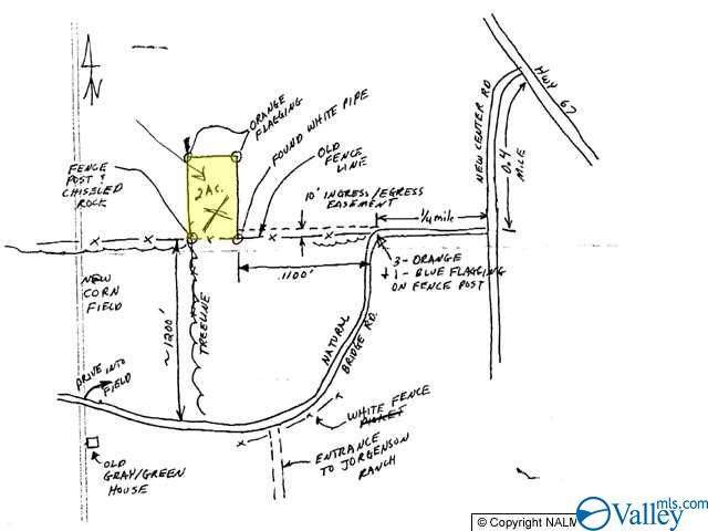 0 Natural Bridge Road, Priceville, AL 35640 (MLS #1779039) :: MarMac Real Estate