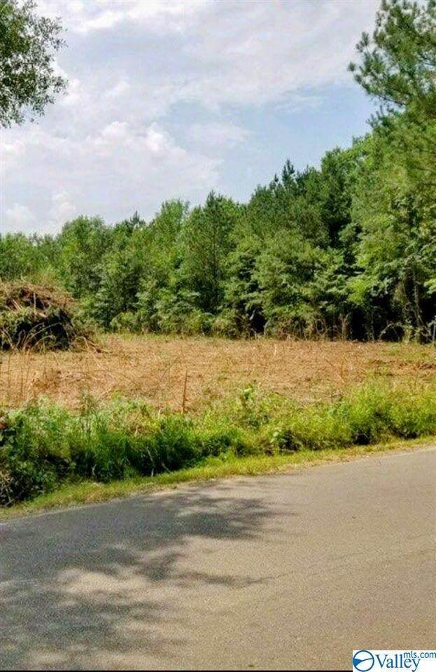 00 Scott Branch Road, New Hope, AL 35760 (MLS #1779334) :: RE/MAX Distinctive | Lowrey Team
