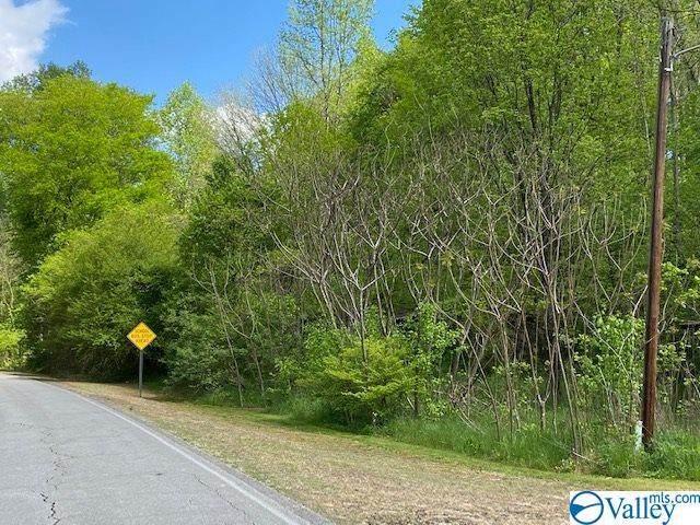 28165 Persimmon Tree Road - Photo 1