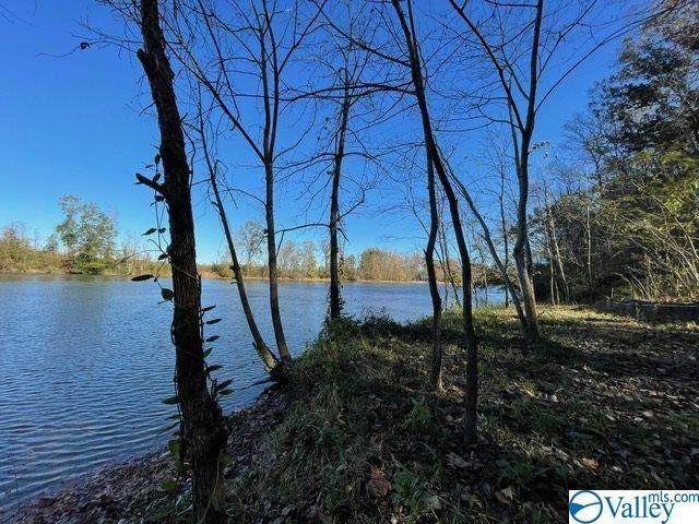 0 Old Us Hwy 278, Hokes Bluff, AL 35903 (MLS #1780540) :: Green Real Estate