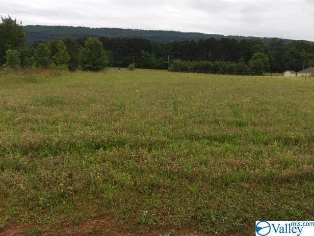 0 Highway 411, Leesburg, AL 35983 (MLS #1781059) :: Green Real Estate