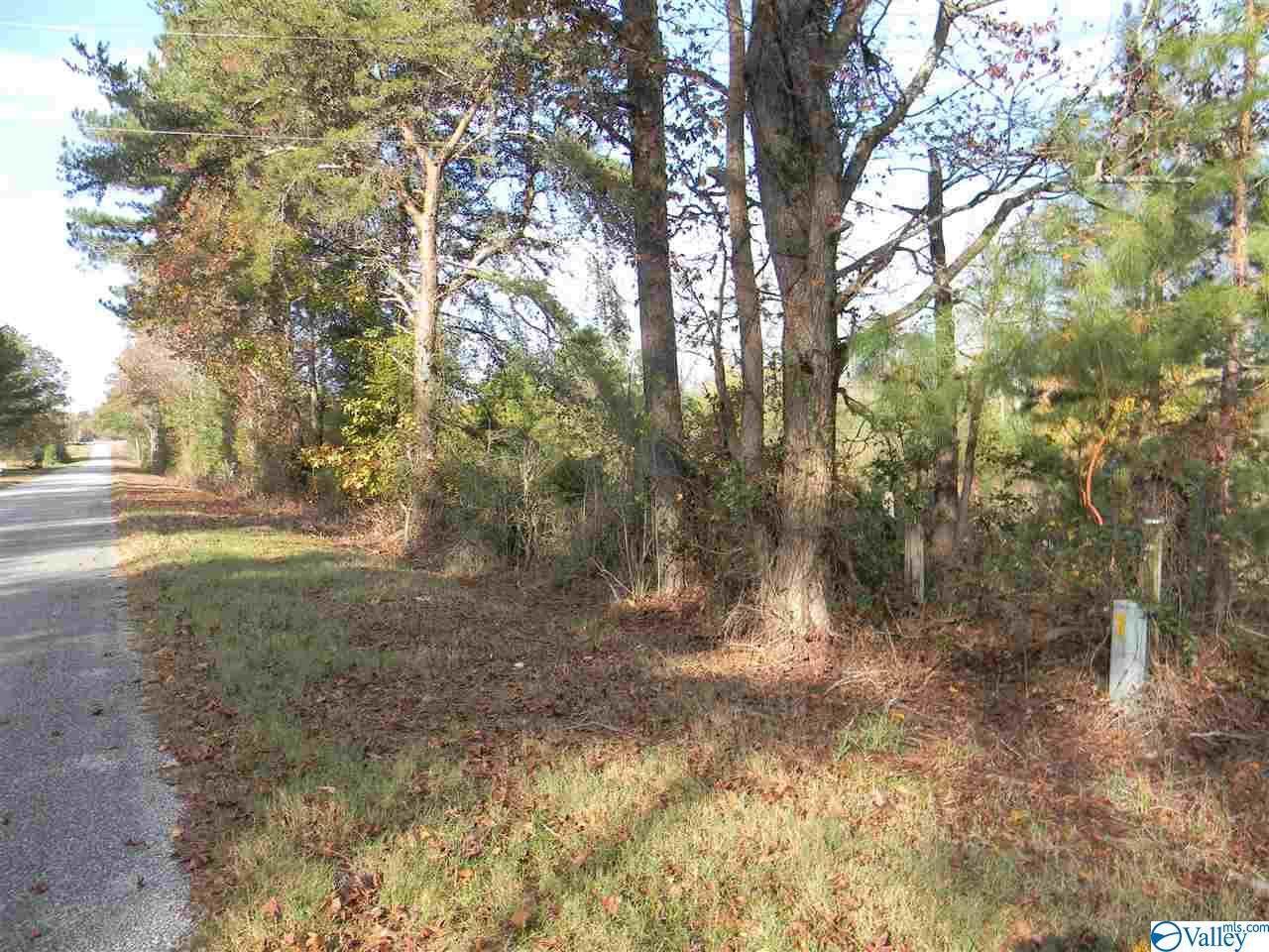 Tract # 6 B County Road 142 - Photo 1