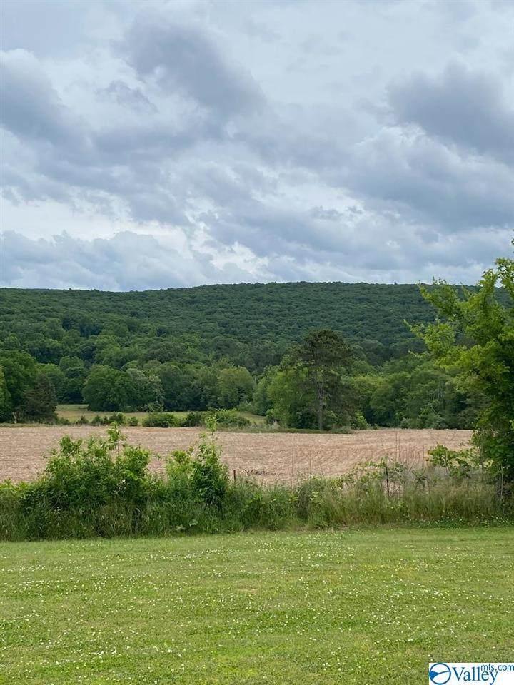 2177 County Lake Road - Photo 1