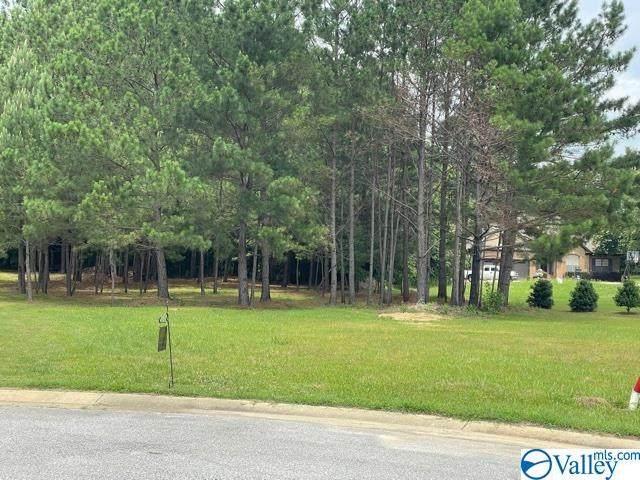 0 Ashley Lane, Southside, AL 35907 (MLS #1784569) :: Green Real Estate