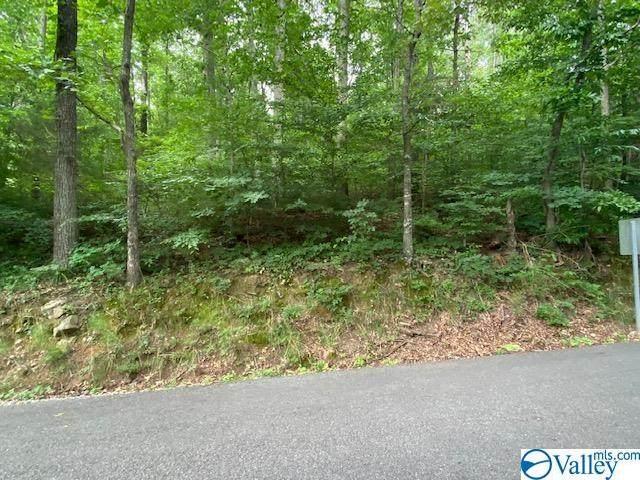 Wyeth Drive, Guntersville, AL 35976 (MLS #1784713) :: RE/MAX Unlimited