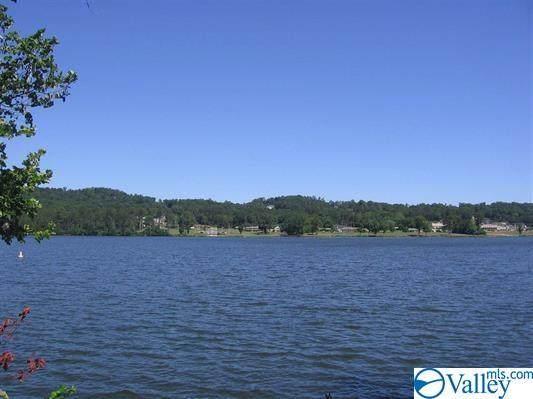 109 Riviera Drive, Guntersville, AL 35976 (MLS #1785624) :: Southern Shade Realty