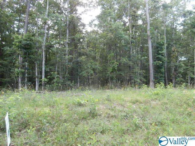 Lot 5 County Road 106, Mentone, AL 35984 (MLS #1786510) :: Coldwell Banker of the Valley