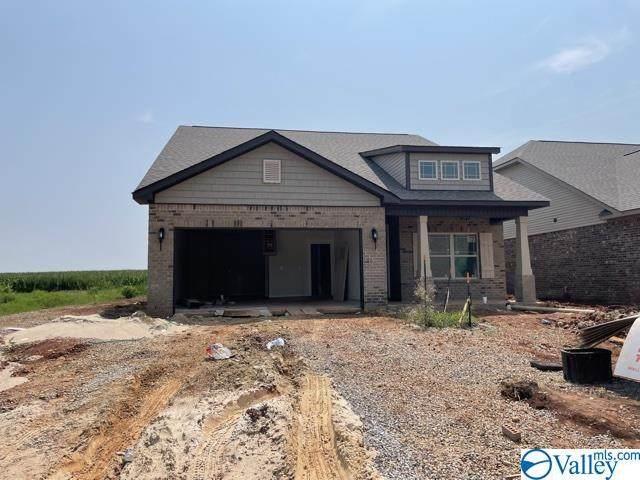 124 Bose Street, Meridianville, AL 35759 (MLS #1786625) :: Green Real Estate