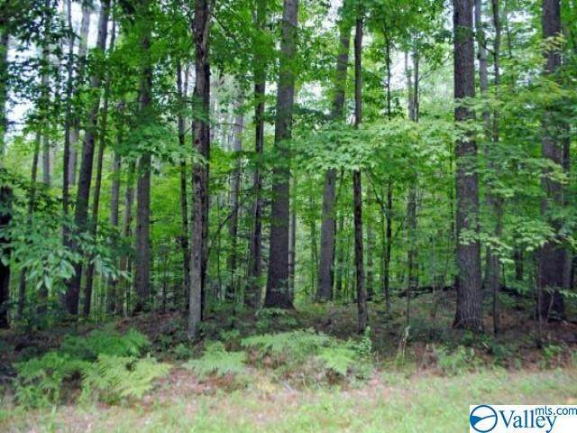 0 Alabama Highway 33, Moulton, AL 35650 (MLS #1790467) :: Coldwell Banker of the Valley
