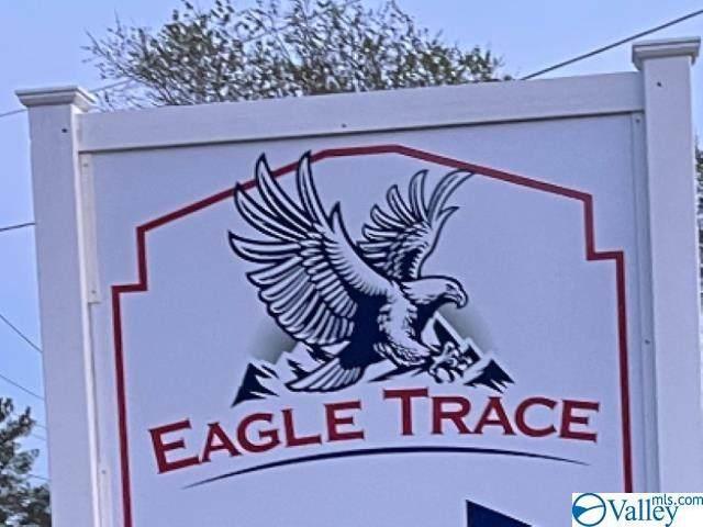 6212 Eagle Point Circle, Owens Cross Roads, AL 35763 (MLS #1791415) :: Legend Realty