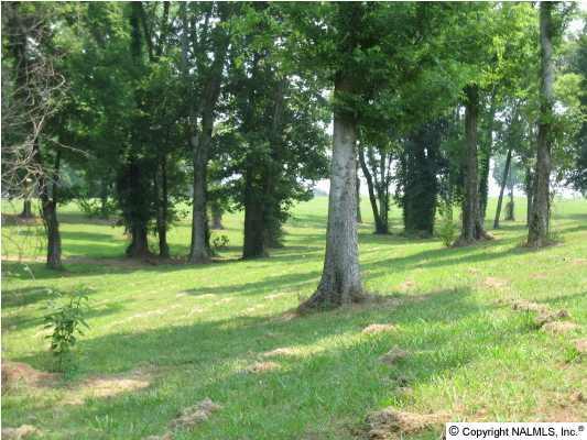78 Saint Andrews Drive, Athens, AL 35611 (MLS #278808) :: Amanda Howard Real Estate™