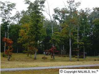 131 Hillsdale Drive, Gurley, AL 35748 (MLS #289174) :: Amanda Howard Sotheby's International Realty