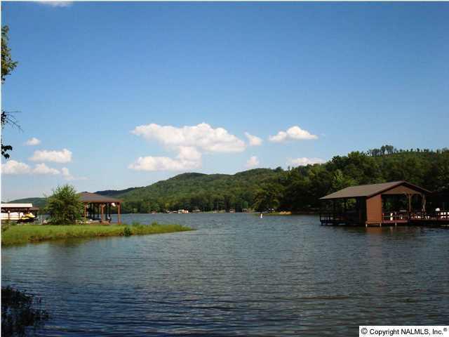 107 County Road 479, Cedar Bluff, AL 35959 (MLS #345533) :: Amanda Howard Sotheby's International Realty