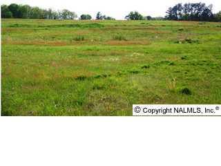 0000 Park Road, Union Grove, AL 35175 (MLS #516115) :: Amanda Howard Real Estate™