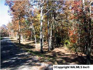 3 County Road 935, Mentone, AL 35984 (MLS #644544) :: RE/MAX Alliance