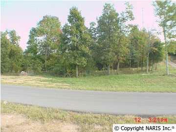 4615 Citadel Rock Road, Fort Payne, AL 35967 (MLS #714858) :: Amanda Howard Sotheby's International Realty