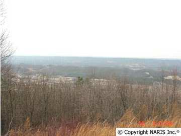 4220 Citadel Rock Road, Fort Payne, AL 35967 (MLS #755962) :: RE/MAX Distinctive | Lowrey Team