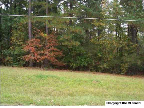 4 County Road 380, Centre, AL 35960 (MLS #785599) :: Capstone Realty