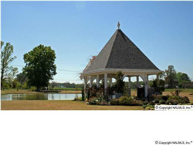 2802 Turtle Pond Lane, Hartselle, AL 35640 (MLS #865032) :: RE/MAX Alliance