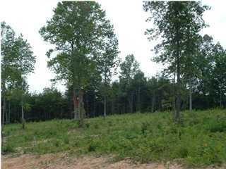 4 Hunters Trail, Trenton, GA 30752 (MLS #1020093) :: RE/MAX Alliance