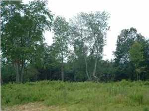 5 Hunters Trail, Trenton, GA 30752 (MLS #1020097) :: RE/MAX Alliance