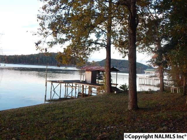 311 County Road 574, Centre, AL 35960 (MLS #1031992) :: RE/MAX Alliance