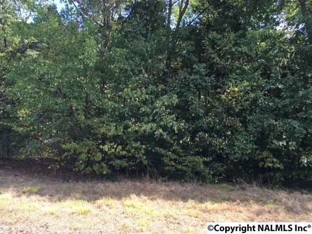 Lot 14 Cedar Trace Drive, Hartselle, AL 35640 (MLS #1036200) :: Amanda Howard Real Estate™