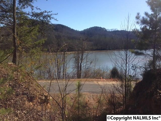 00 County Road 165, Cedar Bluff, AL 35959 (MLS #1036274) :: Amanda Howard Real Estate™