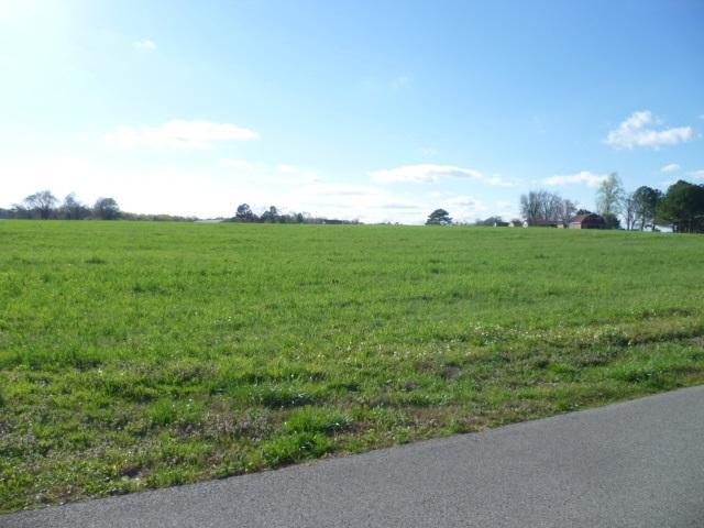 Lot 6 Maple Avenue, Rainsville, AL 35986 (MLS #1066072) :: Amanda Howard Sotheby's International Realty