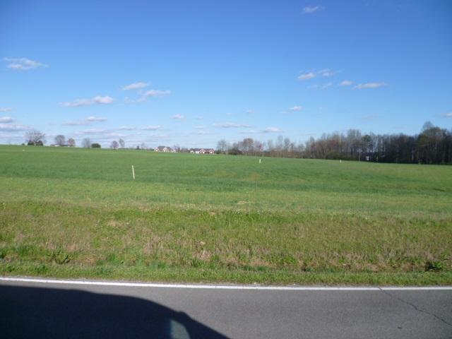 Lot 18 Parker Avenue, Rainsville, AL 35986 (MLS #1066087) :: Amanda Howard Sotheby's International Realty